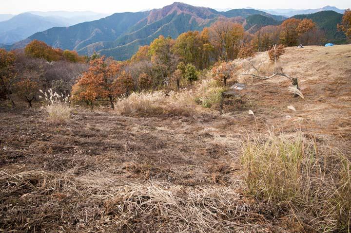 陣馬山高原